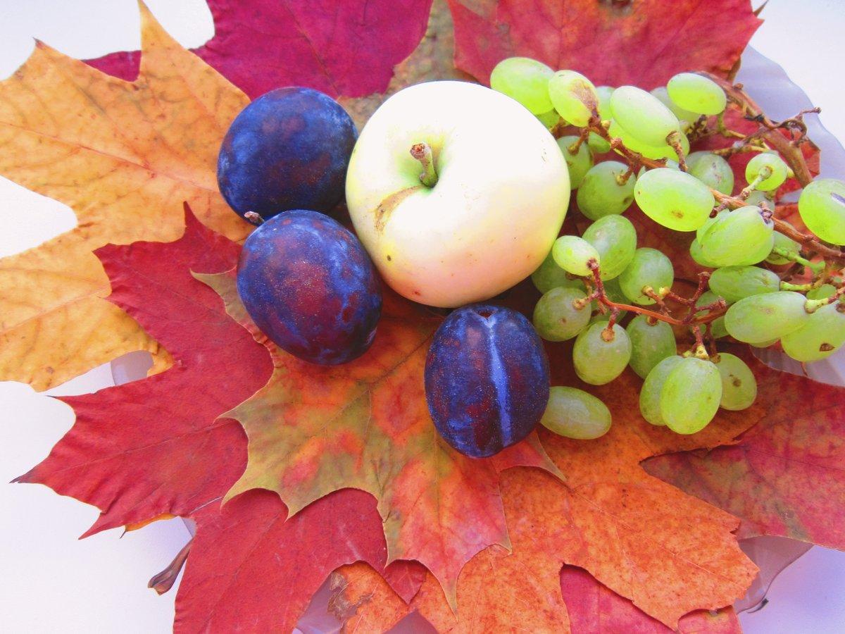 уникальный театр красивые картинки фрукты осень удача в герою предстоит предотвратить