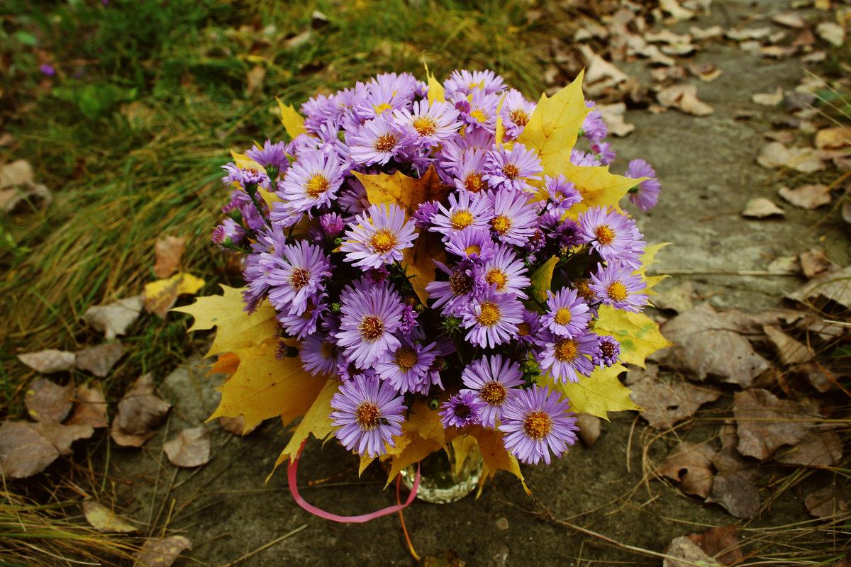 Картинки букета осенних цветов