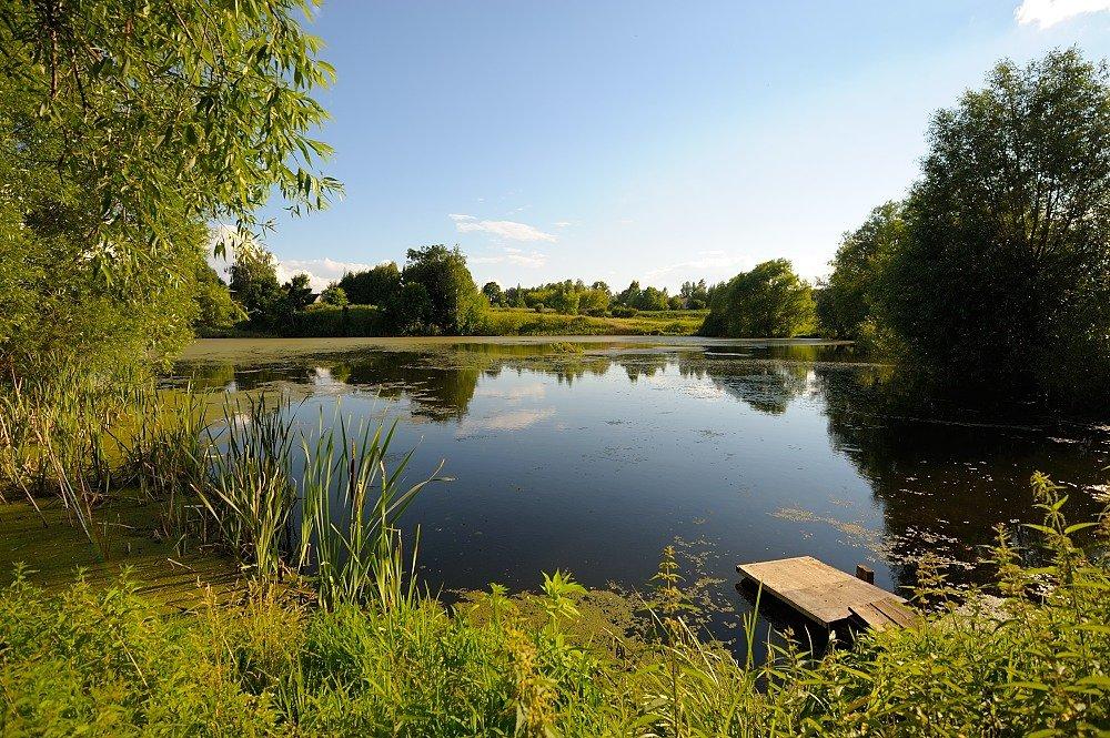 природа на озере деревня кусимово фото творчество