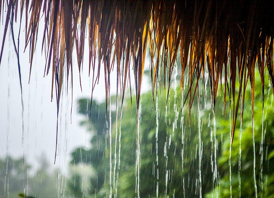 картинка красивая с дождиком нам пояснила экскурсовод