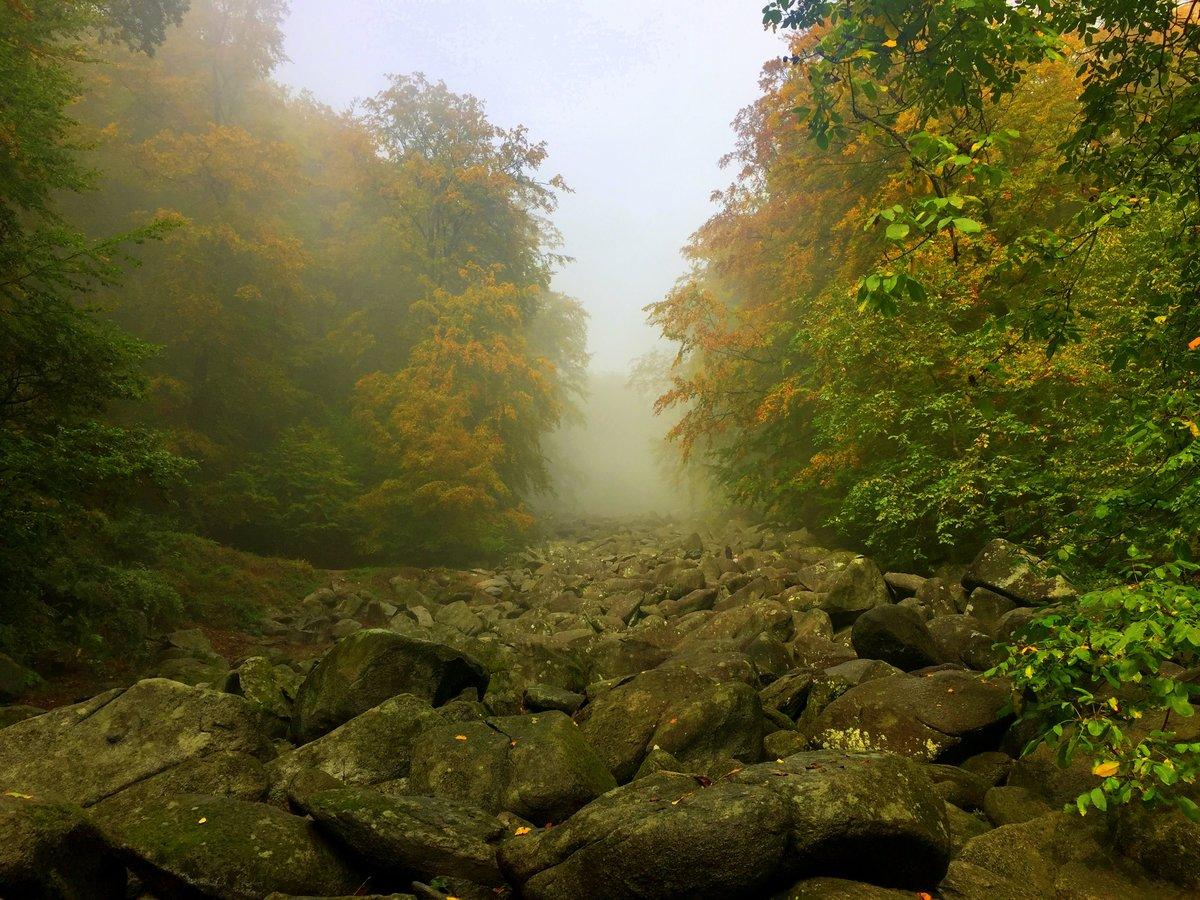 Плывёт туман по каменной реке#осень,#туман,#красота,#природа