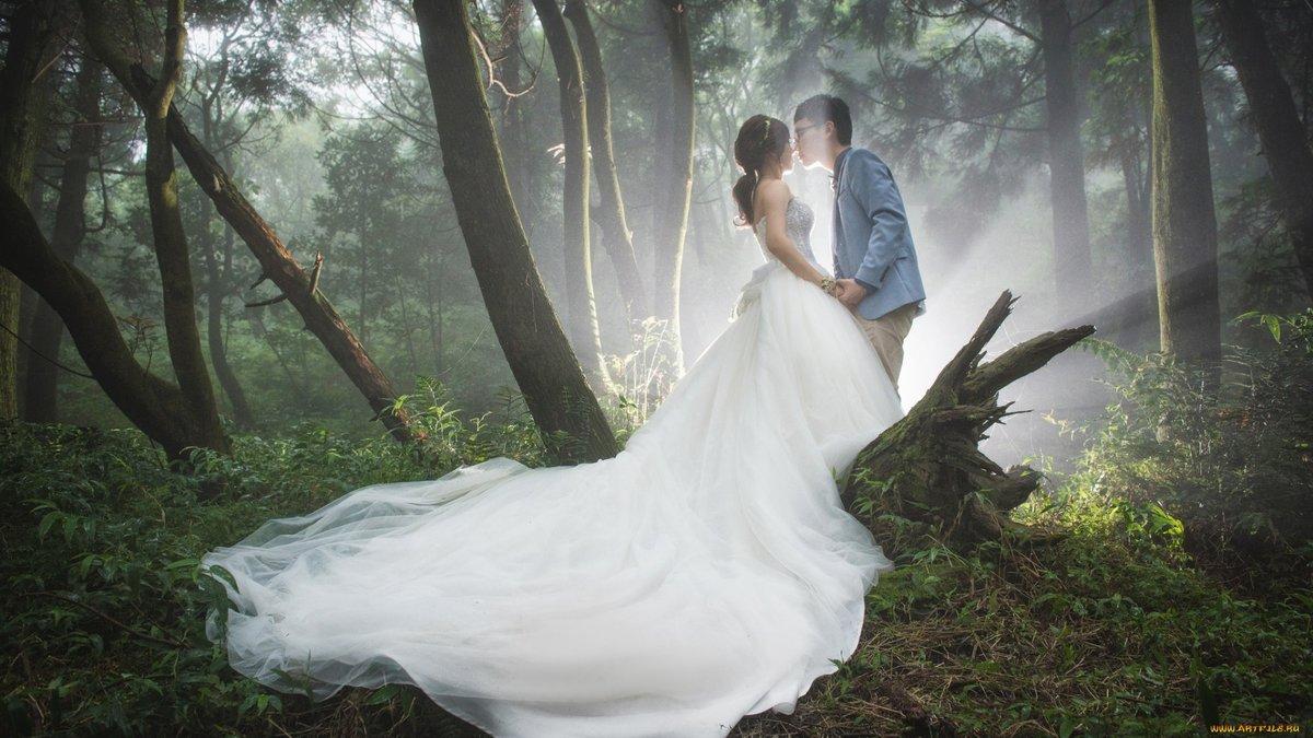 С невестой в лесу — 4