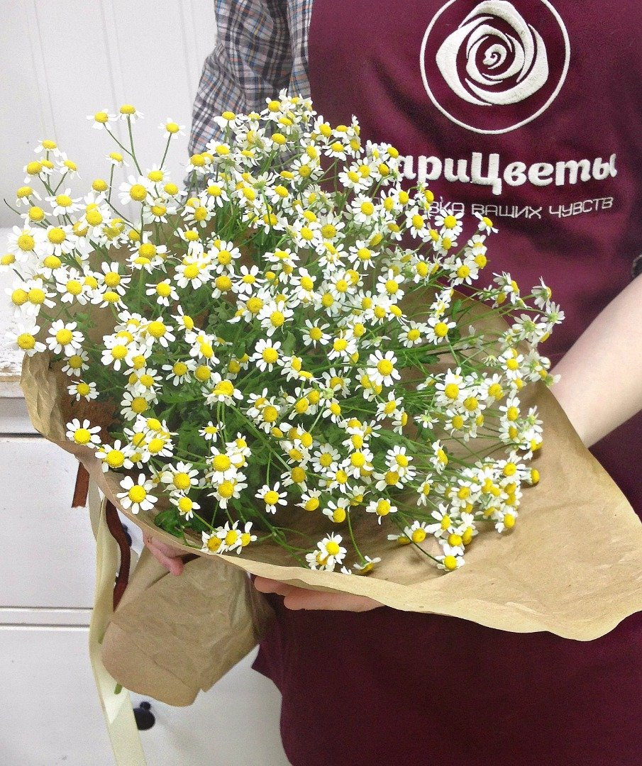 Каталог цветов по заказу через полевых, свадебные
