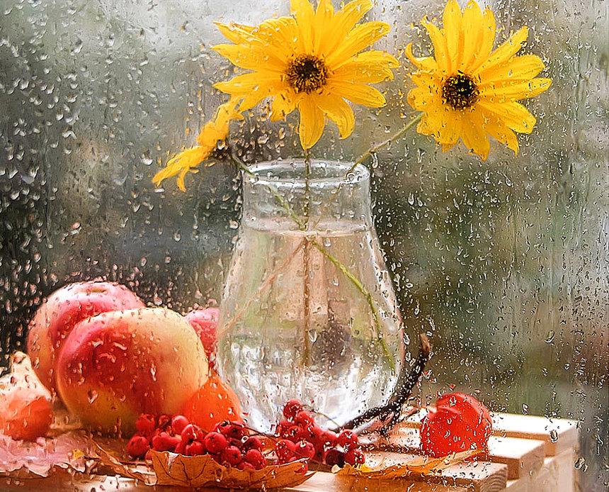 открытки дождливое утро осень поликарбоната
