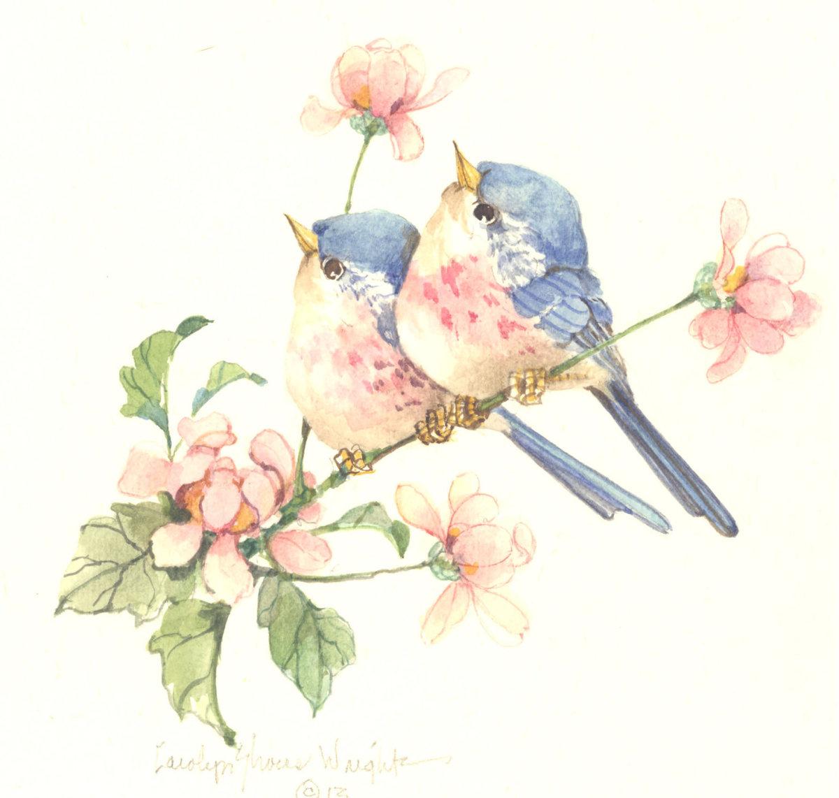 Птицы для открытки