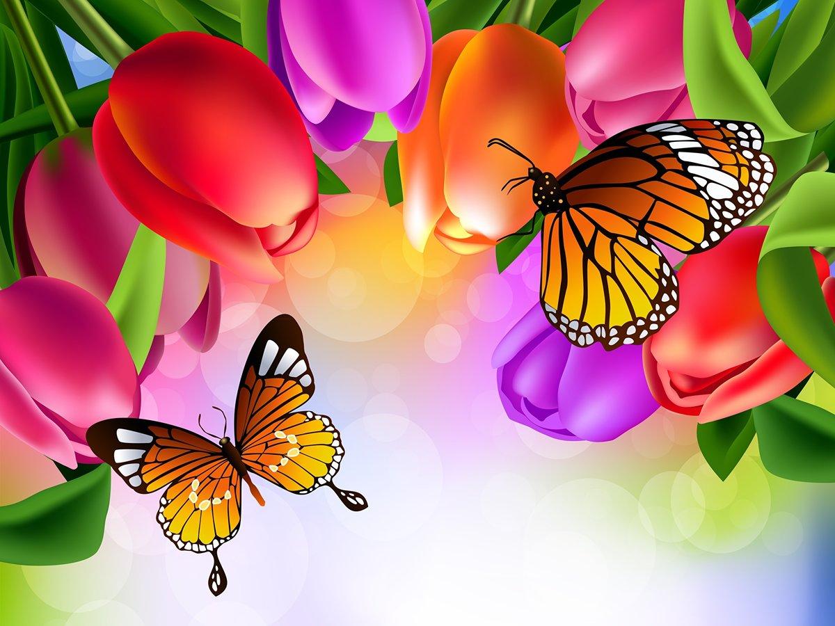 Картинки с бабочками и цветочками