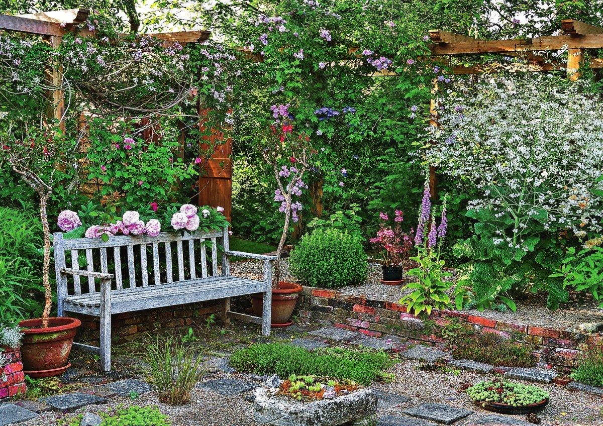 цветные уголки в саду фото умножения