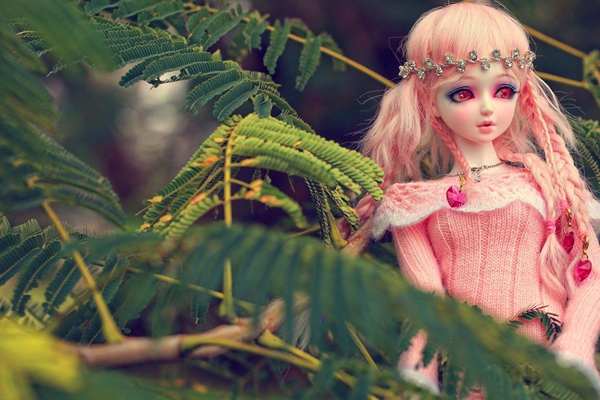 Картинки кукол разных кукол