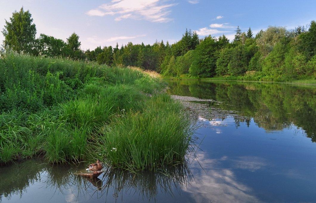 Виды рыб на реках приморского края фото пусть