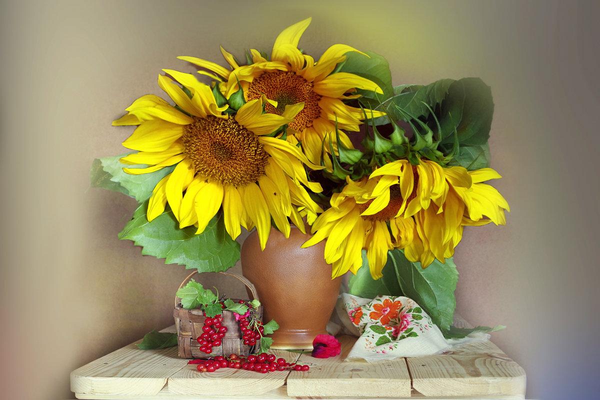 фото картинки цветы подсолнухи в вазах фото