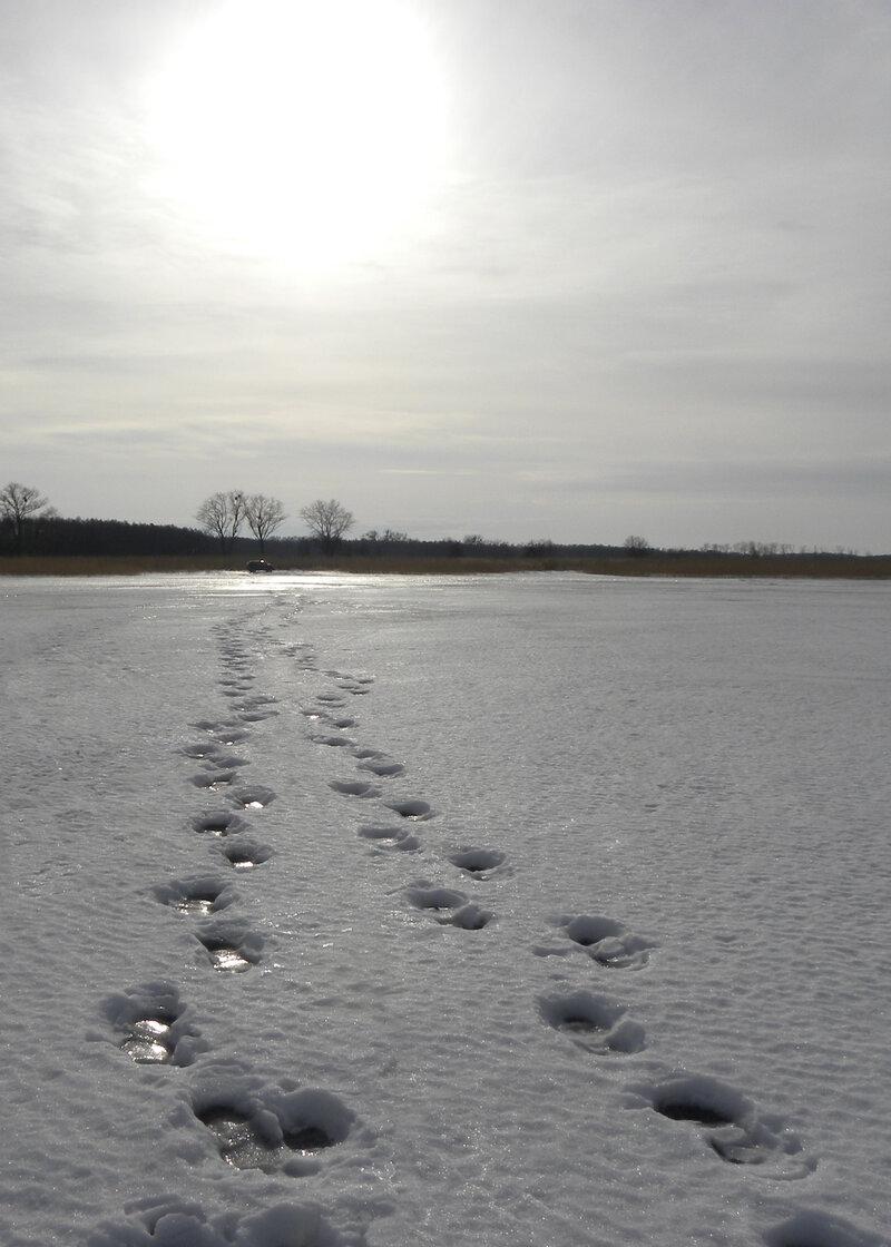 К солнцу #зима #лед #солнце