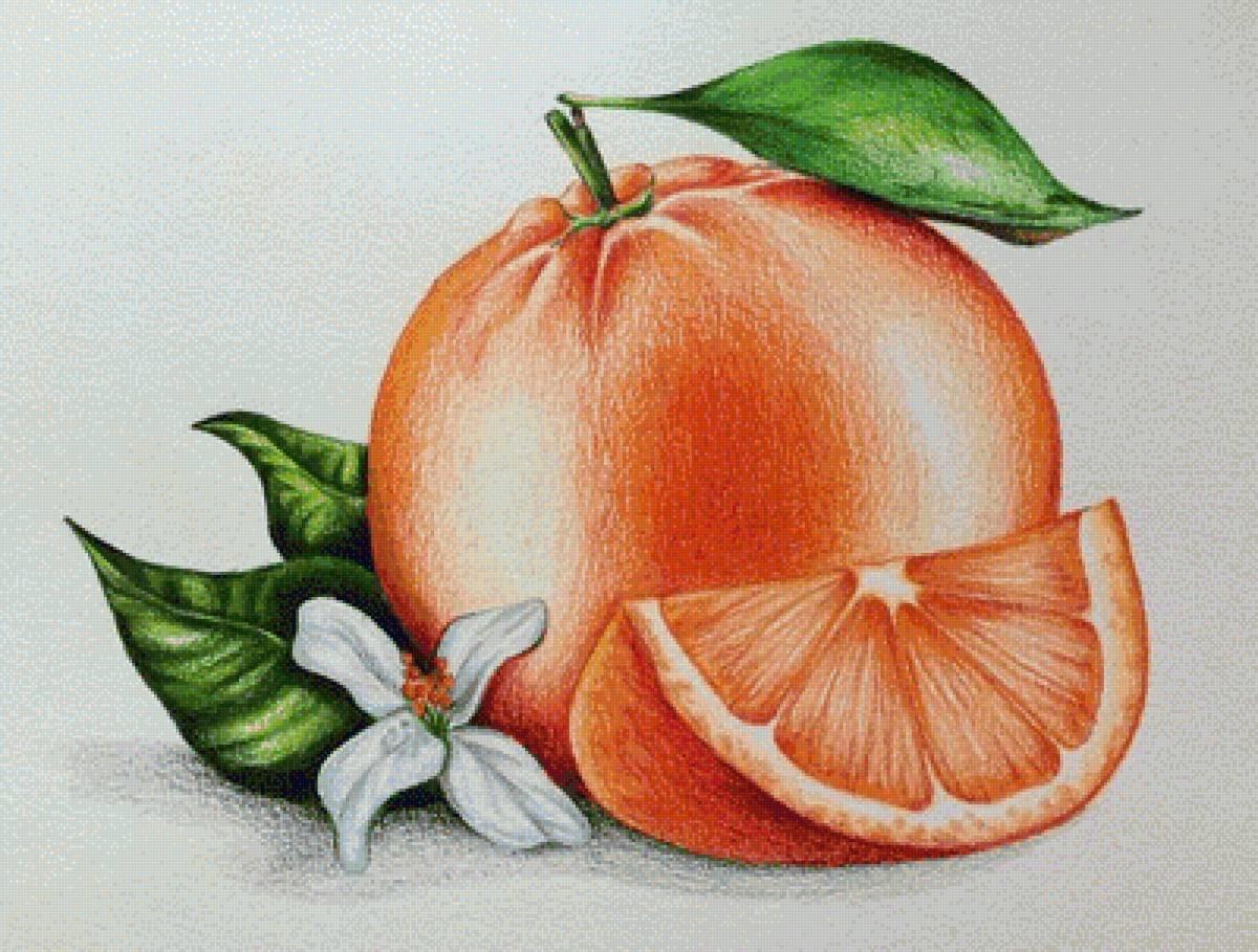 как нарисовать фрукты фото понять, что