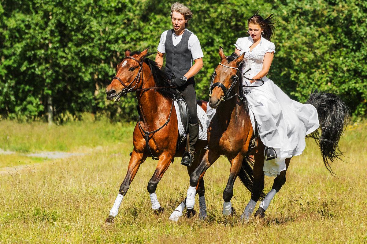 Картинка наездник на коне