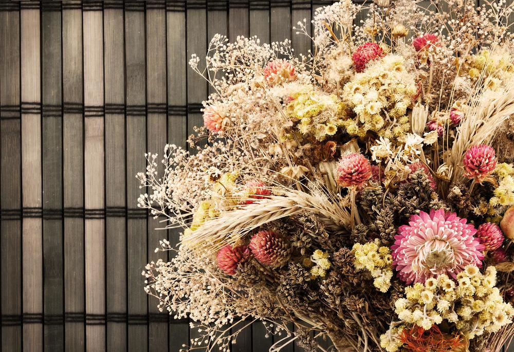 прогулки картинки коллажи сухоцветы испанка покорила