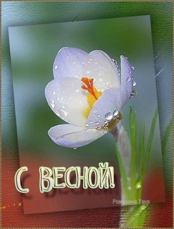 Флеш открытка весна, первый
