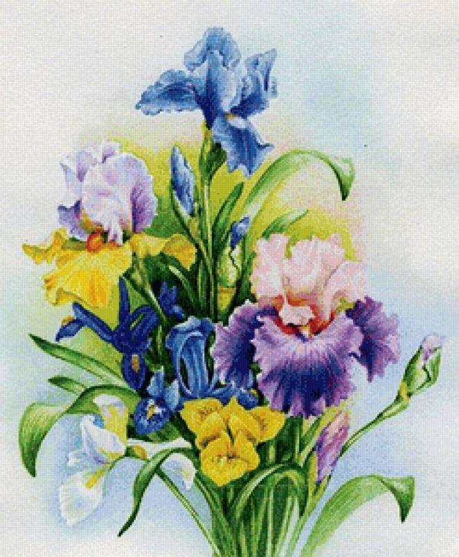Открытка с цветами ирис