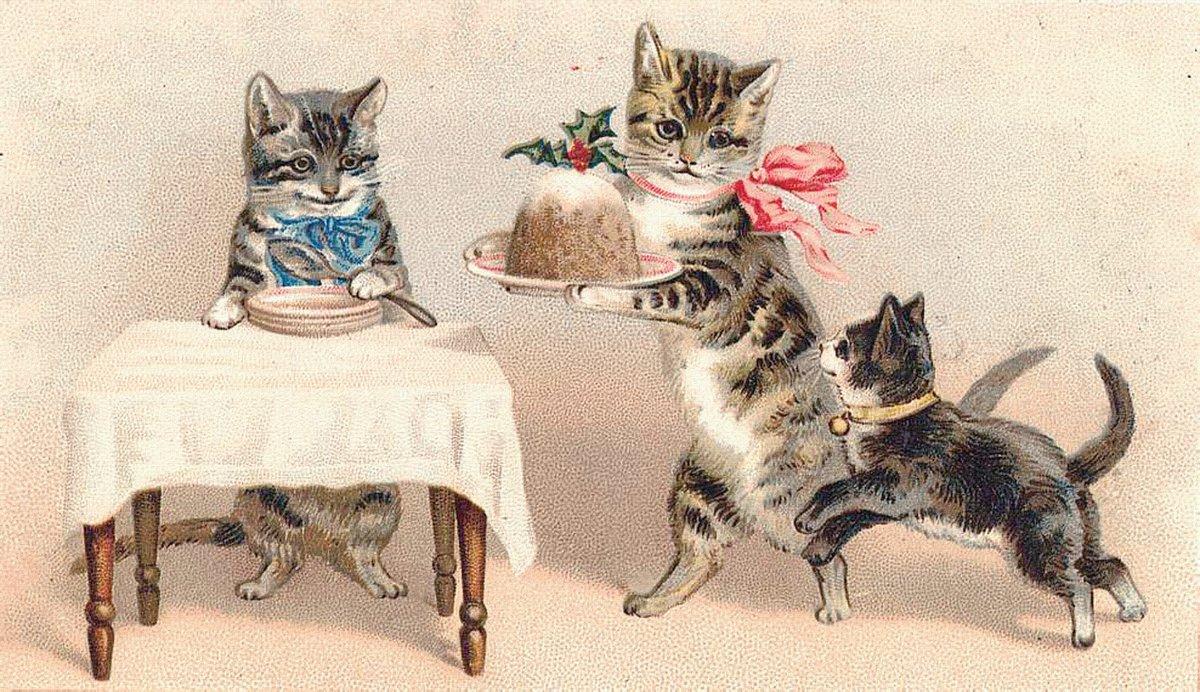 Картинки надписями, старинная котенок открытка