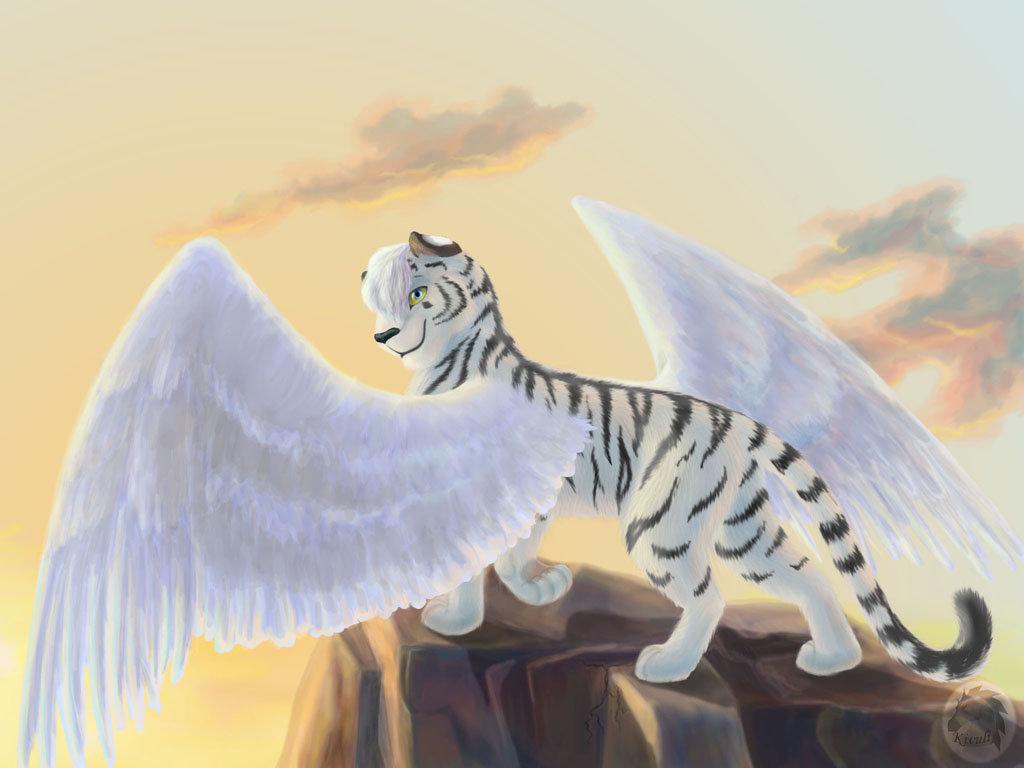 смотреть картинки котов с крыльями арты установка