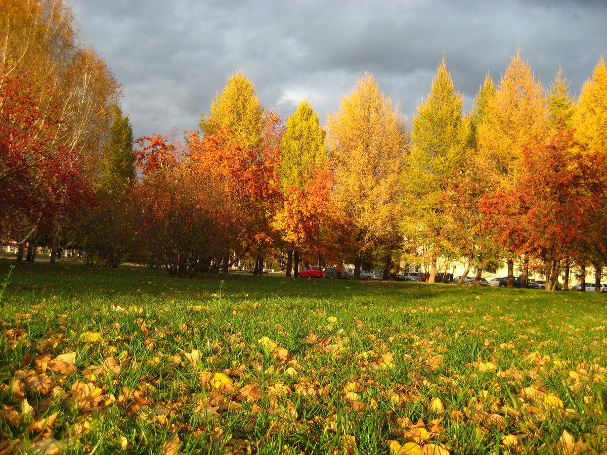 Картинки октября осени