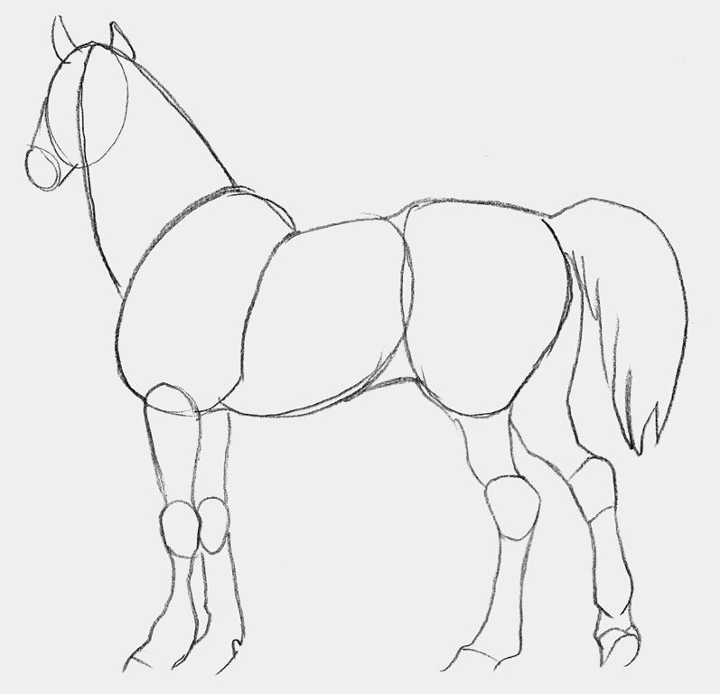 рисунки коней карандашом легко и красиво поэтапно два разных