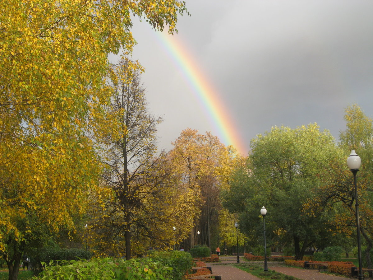 Осенняя радуга картинка