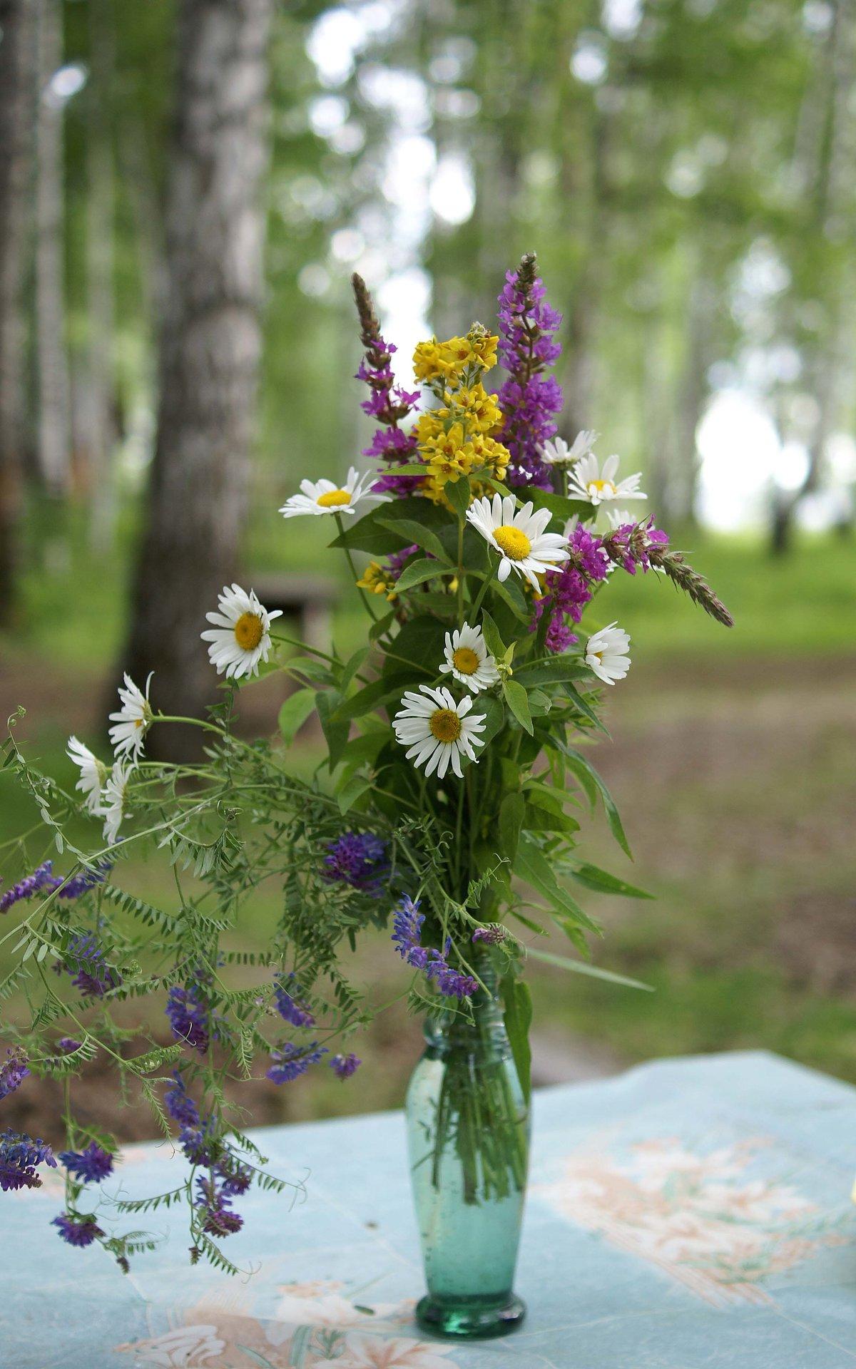 Полевые цветы в букетах картинки