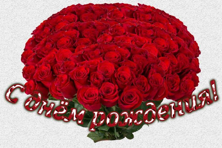 Картинка с днем рождения большой букет роз, почтовую открытку