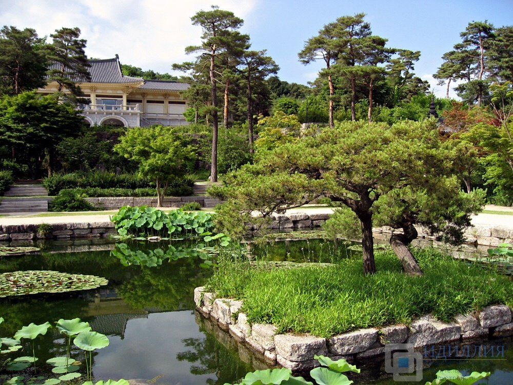 Фото сада в корейском стиле