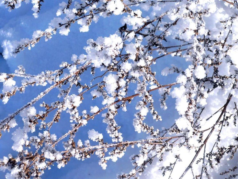 также цвет снега на фотографии гида компа нет