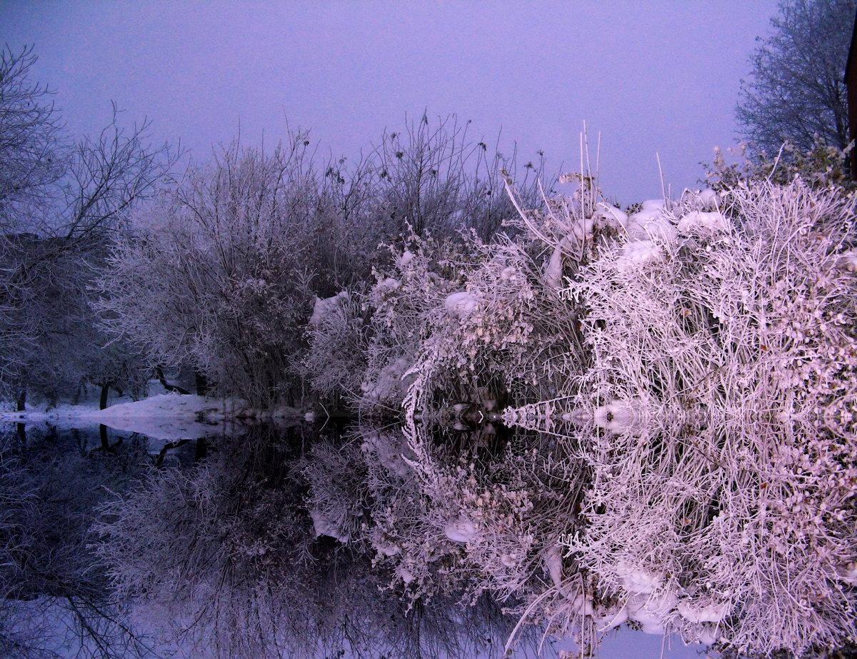 Причуды зимы фото