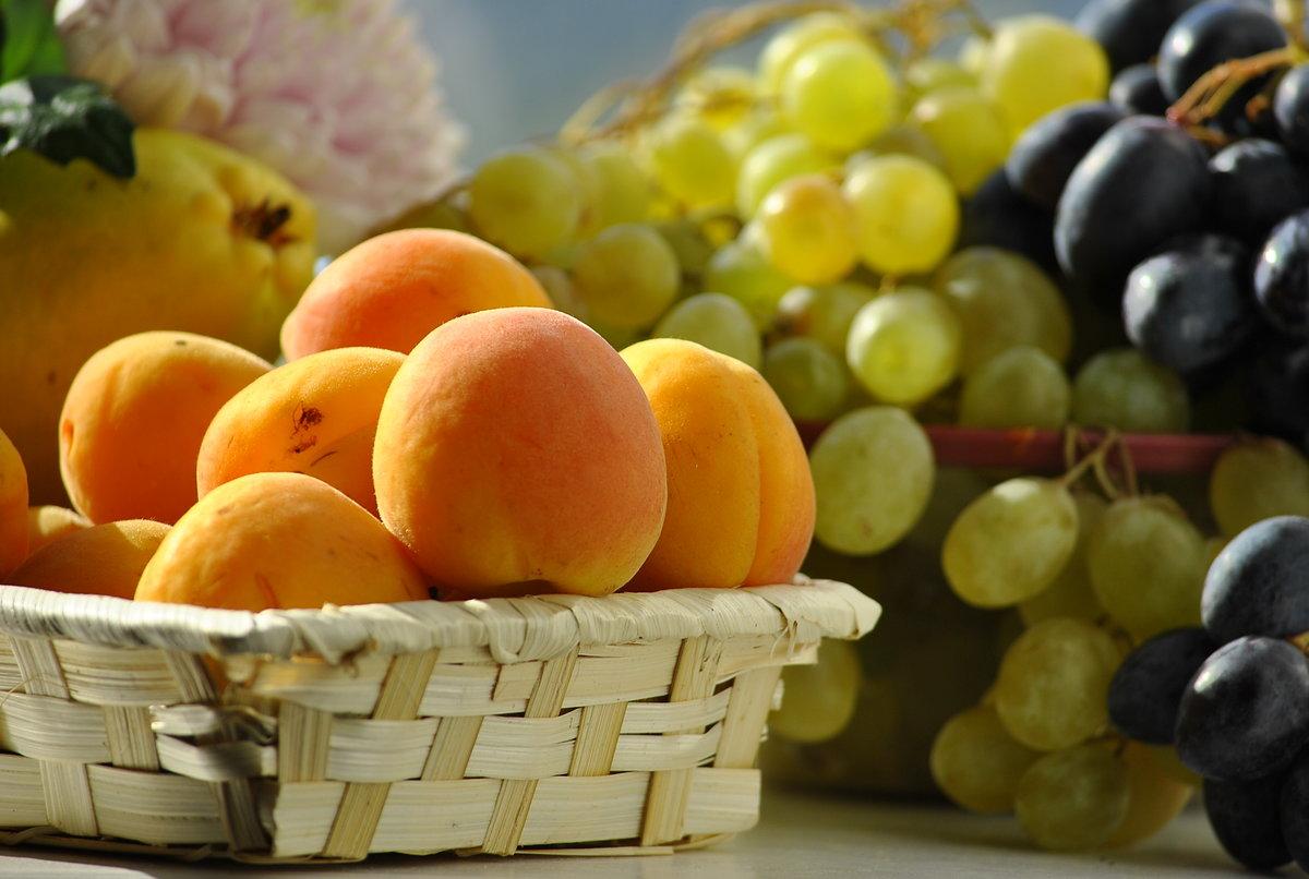 запомнился, красивые картинки персики и виноград этого