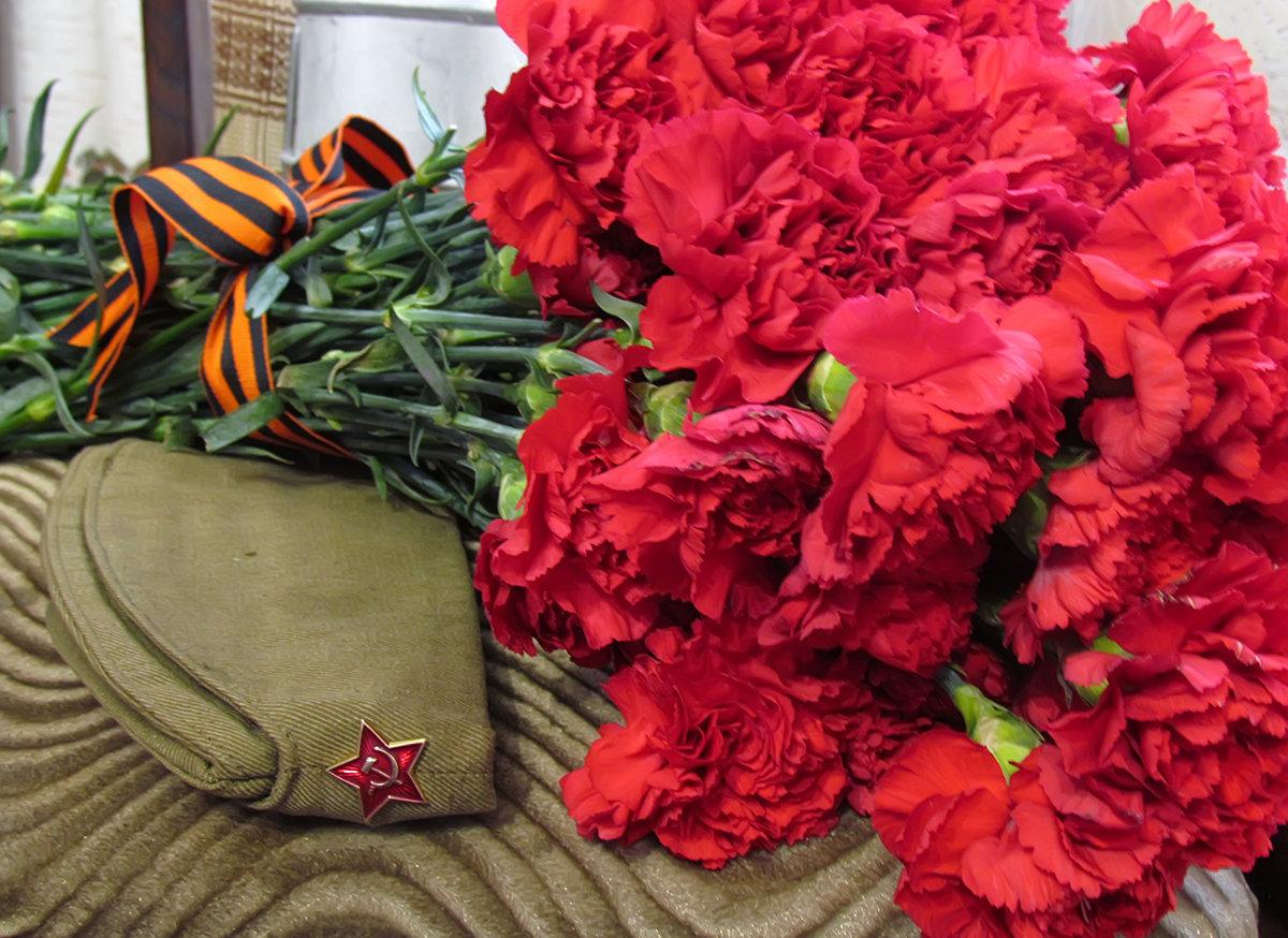 Картинки цветов гвоздики на 9 мая, днем свадьбы лет