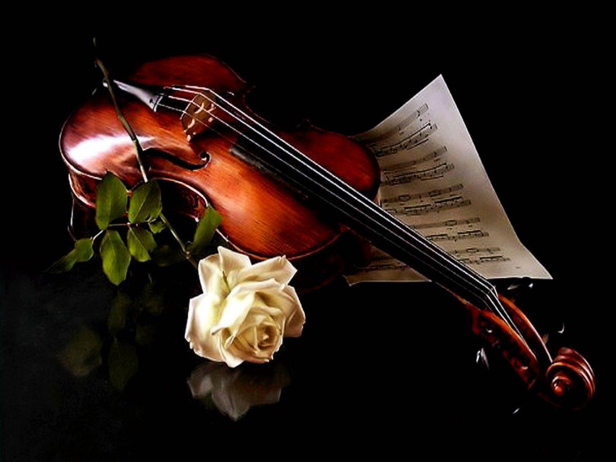 Открытки, скрипка и цветы открытка