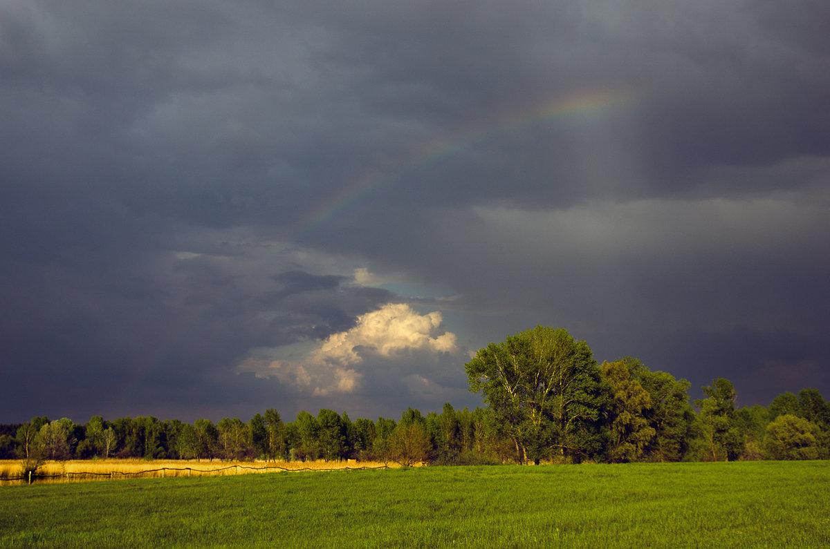 правильном подходе фото облака перед дождем гусеницы выводят наружу