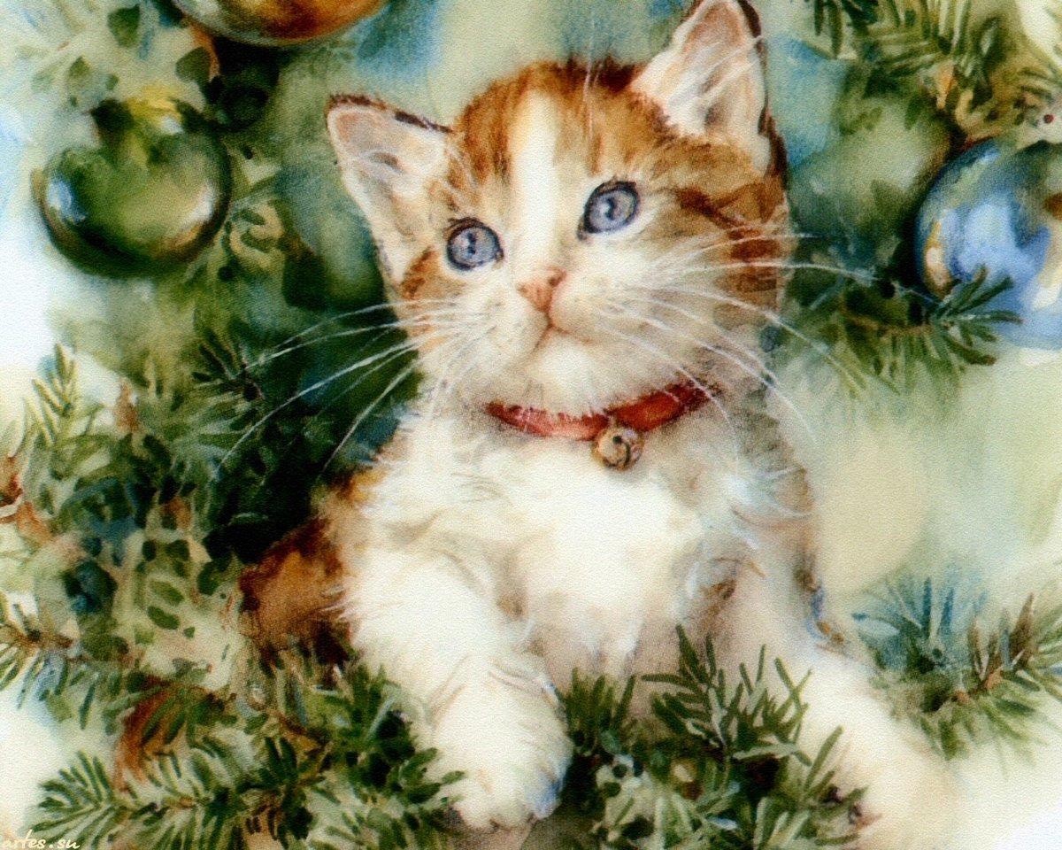 Поздравление, открытки с котятами и кошками