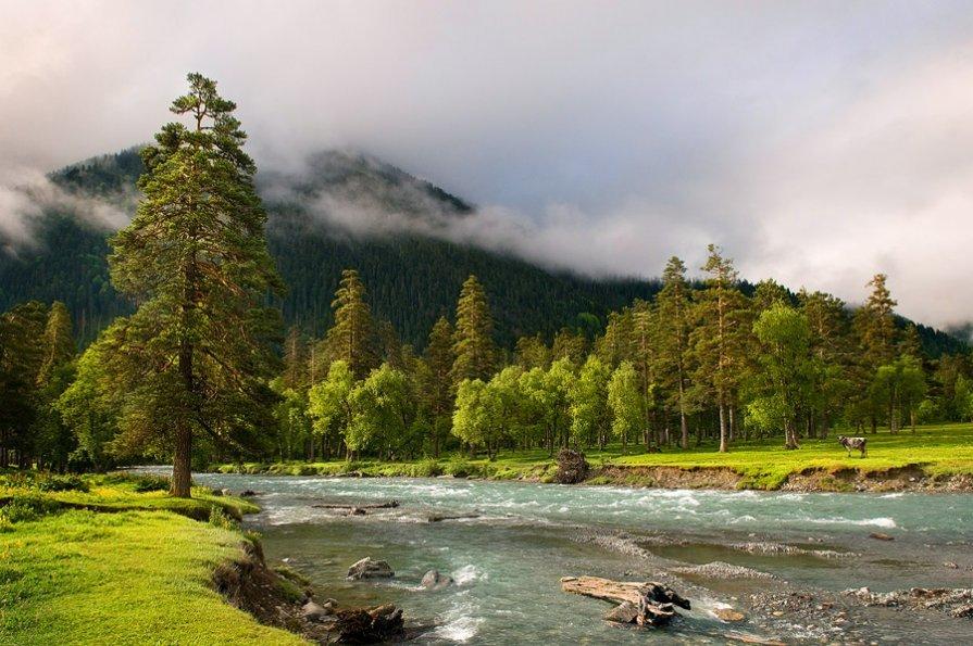 фразы картинки с пейзажами сибири будут показаны цены
