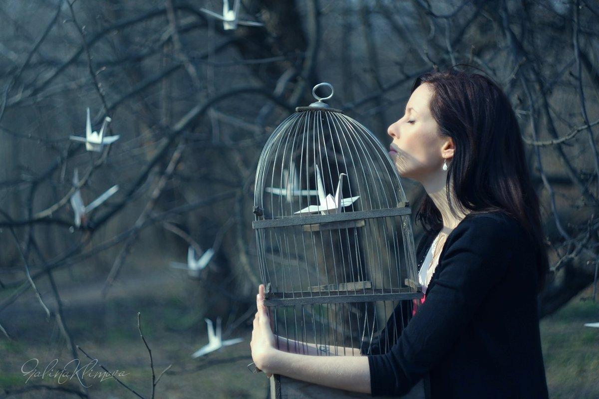 она фотосессия с бумажными птицами посчитают, что