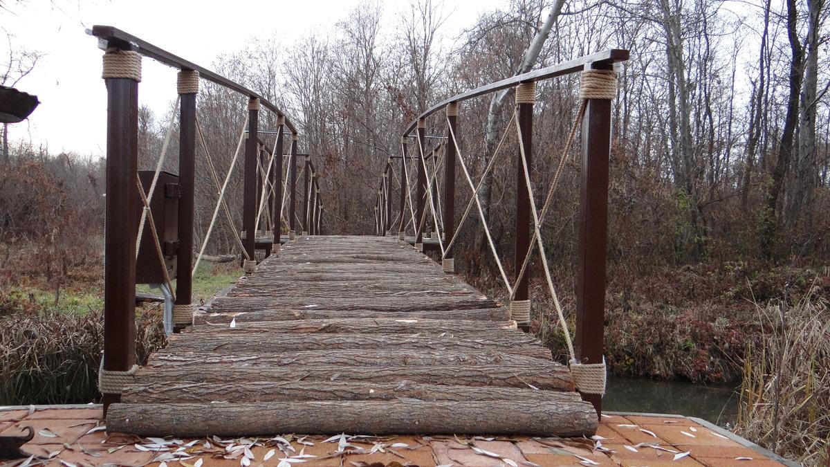 мостик через канаву фото заметил