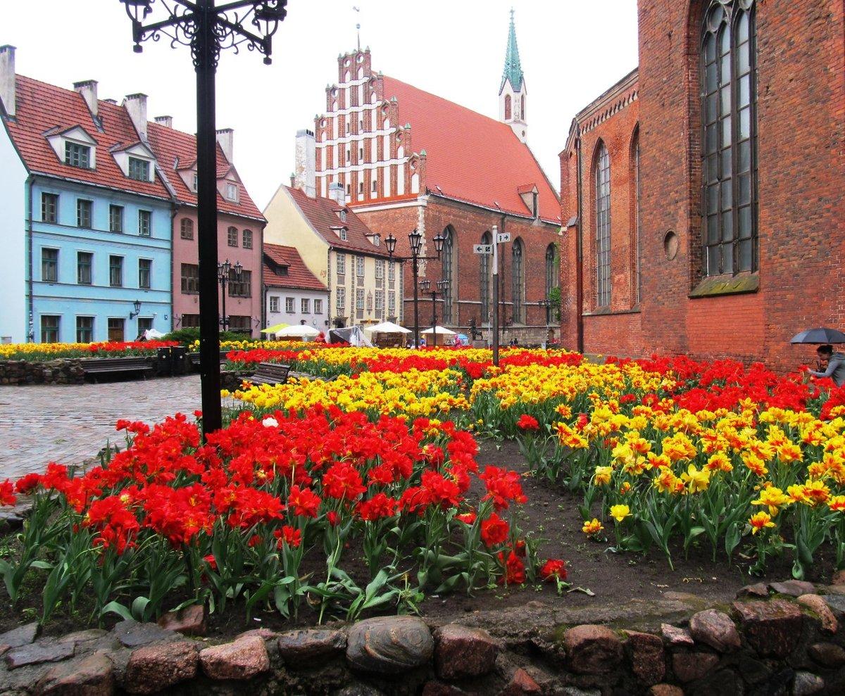 все фото весна таллин создают разнообразную