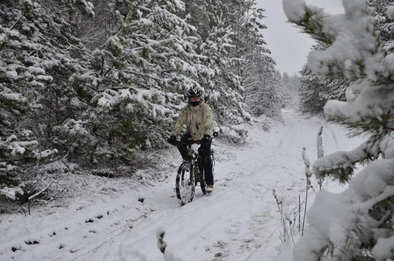 Удивительно, что, однажды научившись ездить на велосипеде, вы никогда не разучитесь это делать!