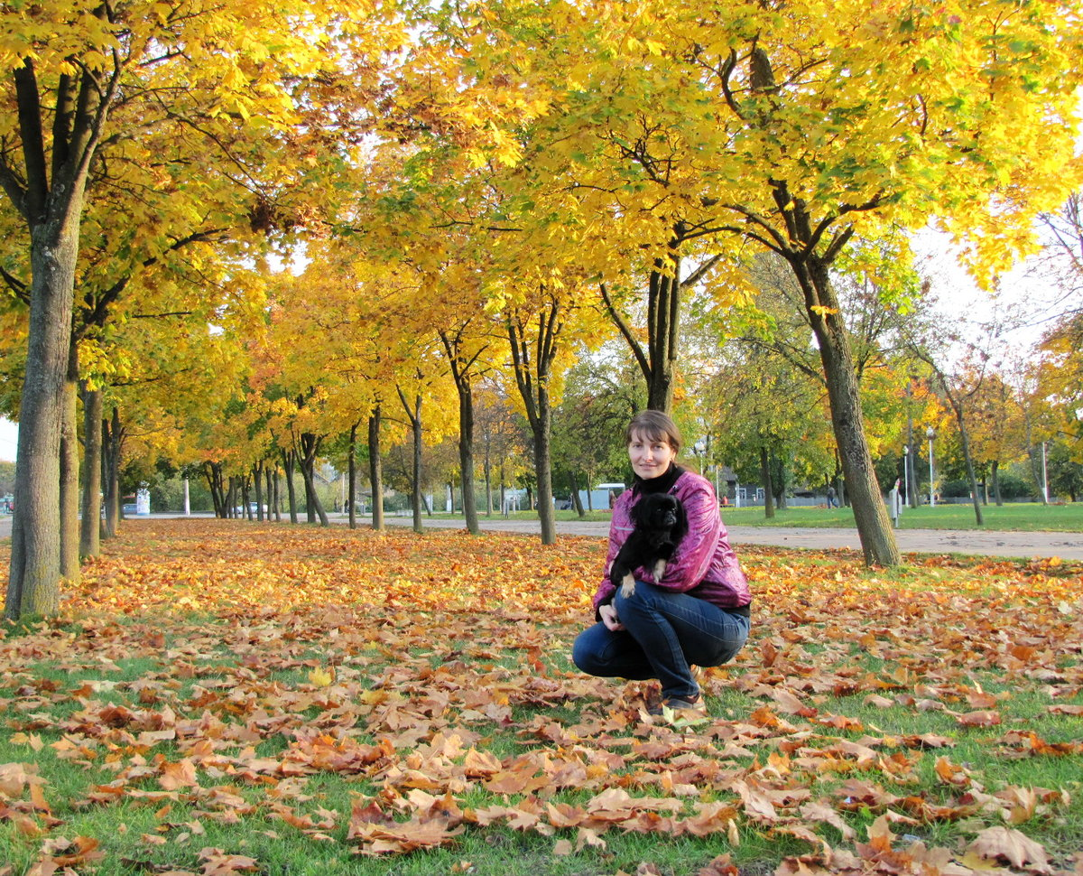 Осень фото любителей