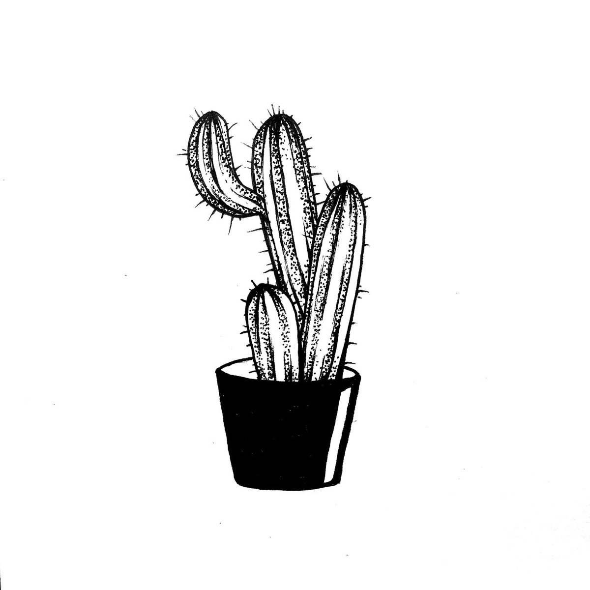 Cactus Drawing Black And White Tumblr Card From User S Nika92 In