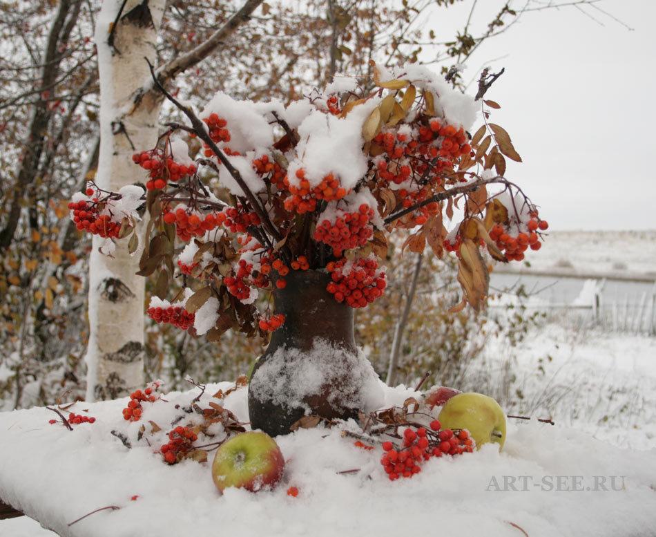 большой, неэкономичный, картинки с рябиной вот и зима этот живописный поселок