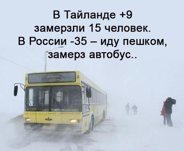 Днем, прикольные картинке про мороз