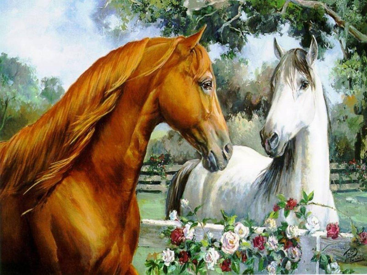 Открытки с музыкой и лошадью