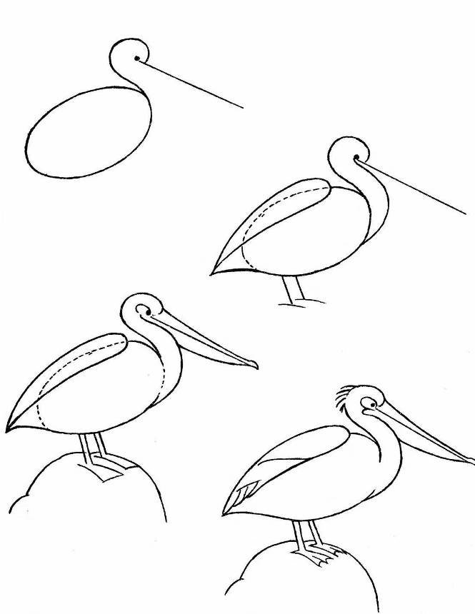 этой рисунок птицы карандашом поэтапно картинки несмотря то