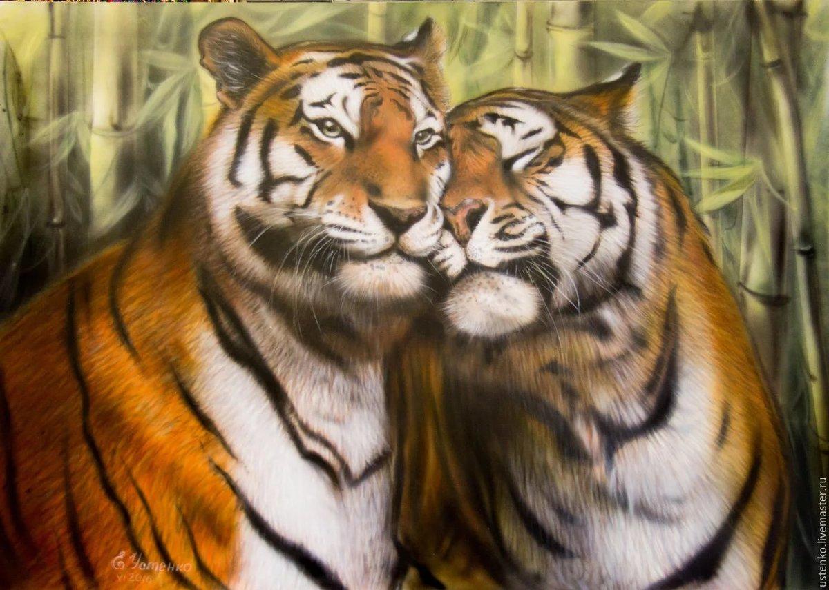 Картинки тигр вместе