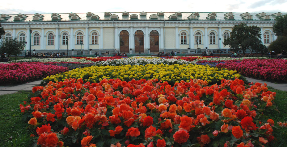 Александровский сад цветы оптом, букеты заказ