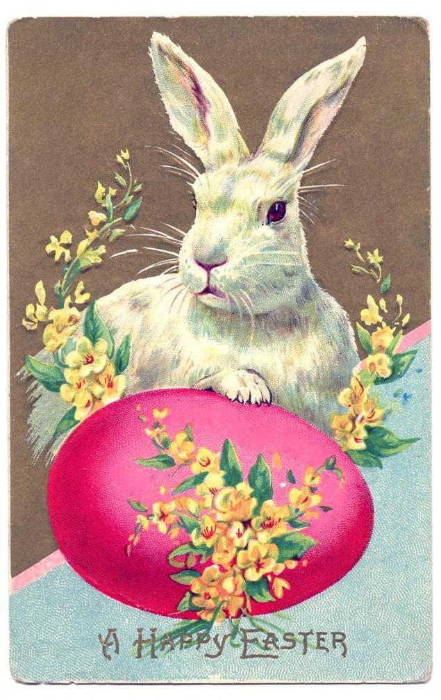 Год, поздравительная открытка кролика