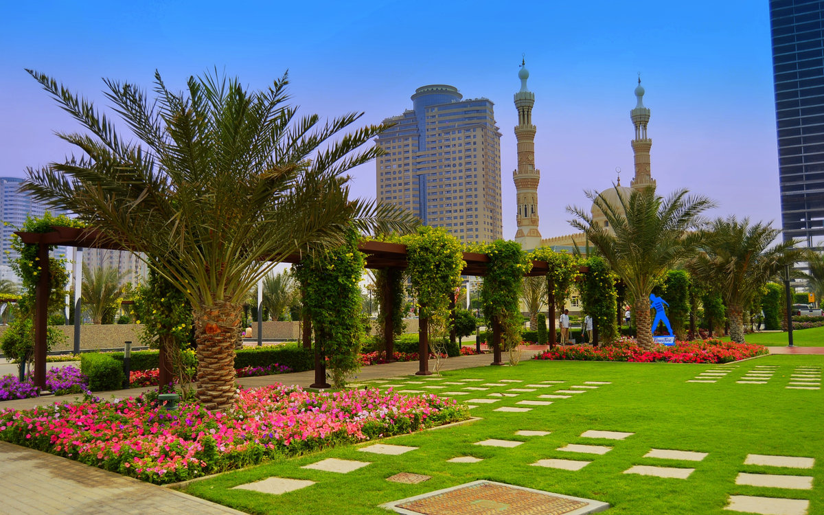 В ОАЭ из Самары